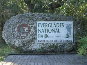 Everglades Nationalpark bei Homestead