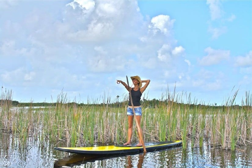Stand Up Paddle Board Safari in den Everglades, Florida