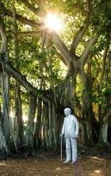 Edison & Ford Winter Estates in Fort Myers Florida